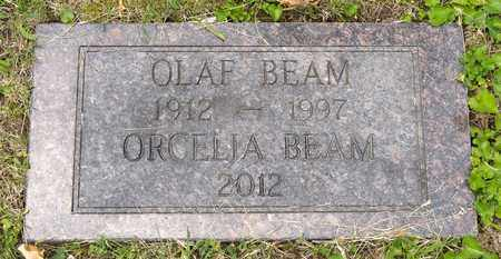 BEAM, OLAF - Wayne County, Ohio | OLAF BEAM - Ohio Gravestone Photos