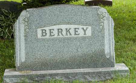 BERKEY, PAULINE L. - Wayne County, Ohio | PAULINE L. BERKEY - Ohio Gravestone Photos