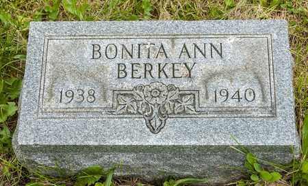 BERKEY, BONITA ANN - Wayne County, Ohio | BONITA ANN BERKEY - Ohio Gravestone Photos
