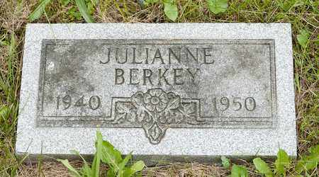 BERKEY, JULIANNE - Wayne County, Ohio | JULIANNE BERKEY - Ohio Gravestone Photos