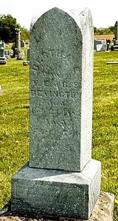 BEVINGTON, BERTHA - Wayne County, Ohio | BERTHA BEVINGTON - Ohio Gravestone Photos