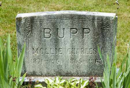 ADAMS BUPP, MOLLIE - Wayne County, Ohio | MOLLIE ADAMS BUPP - Ohio Gravestone Photos