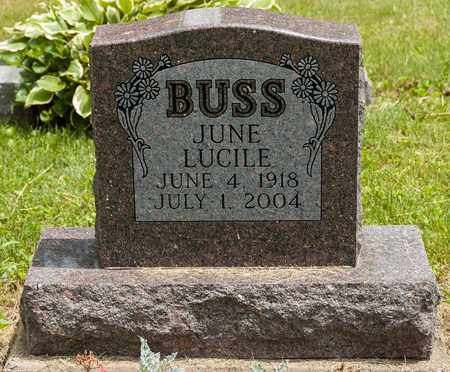 BUSS, JUNE LUCILE - Wayne County, Ohio | JUNE LUCILE BUSS - Ohio Gravestone Photos