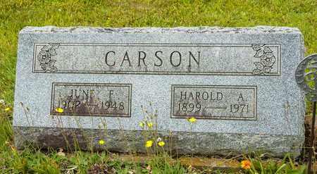 CARSON, HAROLD A. - Wayne County, Ohio | HAROLD A. CARSON - Ohio Gravestone Photos