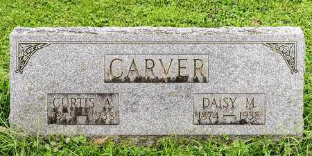 CARVER, DAISY M. - Wayne County, Ohio | DAISY M. CARVER - Ohio Gravestone Photos