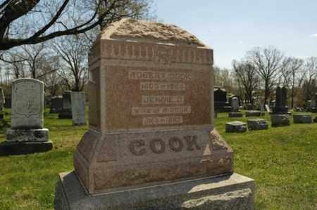 COOK, JENNIE D. - Wayne County, Ohio   JENNIE D. COOK - Ohio Gravestone Photos