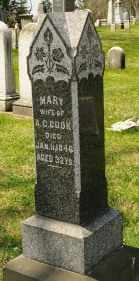 COOK, MARY - Wayne County, Ohio | MARY COOK - Ohio Gravestone Photos