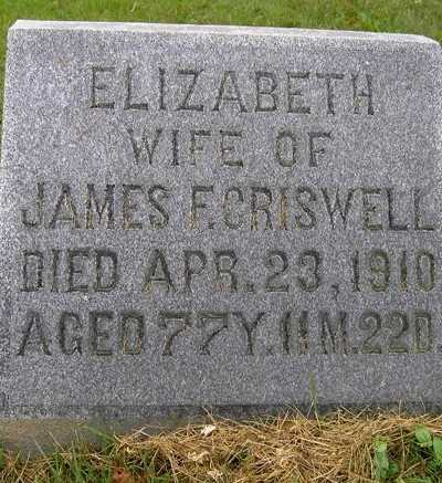SCOTT CRISWELL, ELIZABETH - Wayne County, Ohio | ELIZABETH SCOTT CRISWELL - Ohio Gravestone Photos