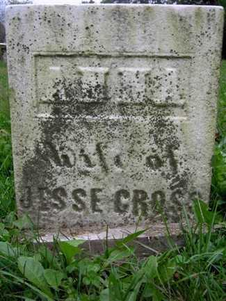CROSS, ANNA - Wayne County, Ohio | ANNA CROSS - Ohio Gravestone Photos