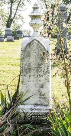 CULBERTSON, ANDREW S. - Wayne County, Ohio | ANDREW S. CULBERTSON - Ohio Gravestone Photos