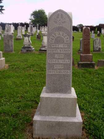 DANNER, ELIZABETH - OVERALL VIEW - Wayne County, Ohio | ELIZABETH - OVERALL VIEW DANNER - Ohio Gravestone Photos