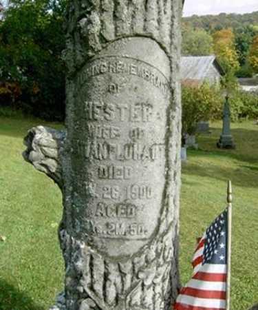 FLUHART, HESTER - Wayne County, Ohio | HESTER FLUHART - Ohio Gravestone Photos