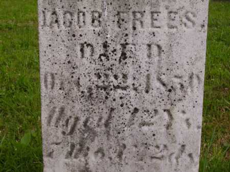 FREES, JACOB - Wayne County, Ohio | JACOB FREES - Ohio Gravestone Photos
