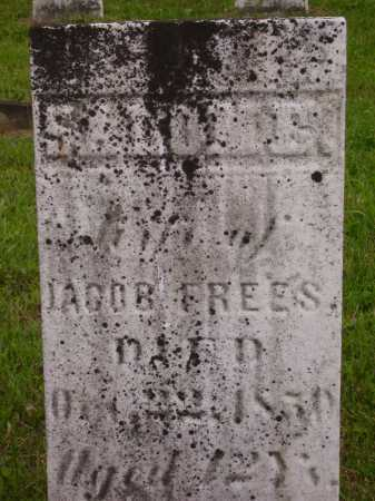 FREES, SALOME - Wayne County, Ohio | SALOME FREES - Ohio Gravestone Photos