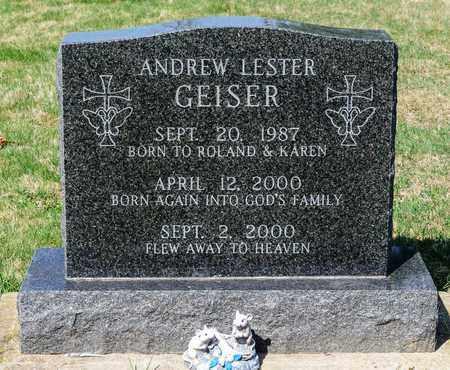 GEISER, ANDREW LESTER - Wayne County, Ohio | ANDREW LESTER GEISER - Ohio Gravestone Photos