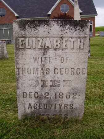 GEORGE, ELIZABETH - Wayne County, Ohio | ELIZABETH GEORGE - Ohio Gravestone Photos