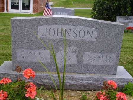 JOHNSON, C. DWIGHT - Wayne County, Ohio | C. DWIGHT JOHNSON - Ohio Gravestone Photos
