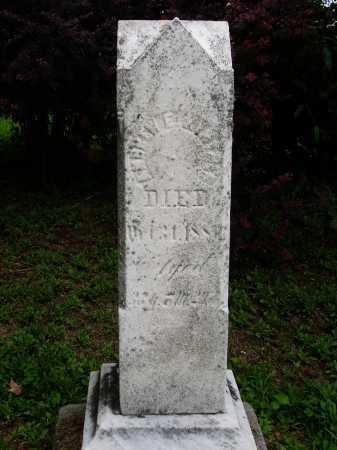 KINTNER, ANDREW E. - Wayne County, Ohio | ANDREW E. KINTNER - Ohio Gravestone Photos