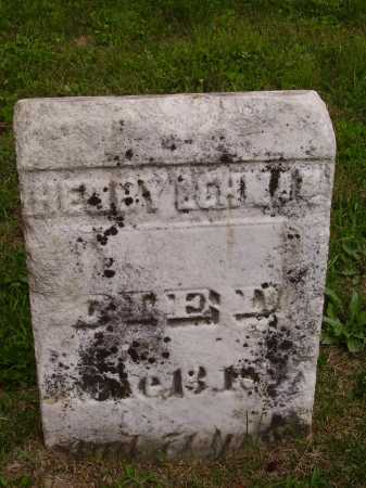 LEHMAN, HENRY - Wayne County, Ohio | HENRY LEHMAN - Ohio Gravestone Photos