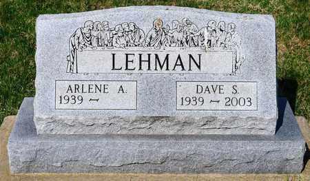 LEHMAN, DAVE S - Wayne County, Ohio | DAVE S LEHMAN - Ohio Gravestone Photos
