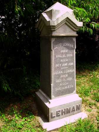 LEHMAN, DAVID - Wayne County, Ohio | DAVID LEHMAN - Ohio Gravestone Photos