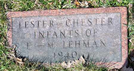 LEHMAN, LESTER - Wayne County, Ohio | LESTER LEHMAN - Ohio Gravestone Photos