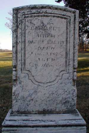 MARTIN, CATHERINE DEHAVEN - Wayne County, Ohio | CATHERINE DEHAVEN MARTIN - Ohio Gravestone Photos