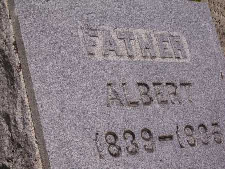 MILLER, ALBERT - Wayne County, Ohio | ALBERT MILLER - Ohio Gravestone Photos