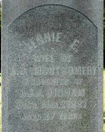 MONTGOMERY, JENNIE E. - Wayne County, Ohio | JENNIE E. MONTGOMERY - Ohio Gravestone Photos