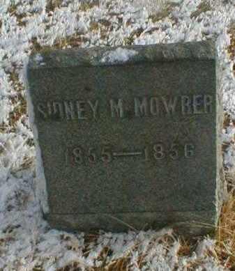 MOWRER, SIDNEY M. - Wayne County, Ohio | SIDNEY M. MOWRER - Ohio Gravestone Photos