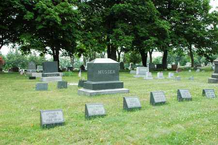 MUSSER, HARVEY - Wayne County, Ohio | HARVEY MUSSER - Ohio Gravestone Photos