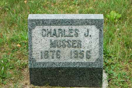MUSSER, CHARLES J. - Wayne County, Ohio | CHARLES J. MUSSER - Ohio Gravestone Photos