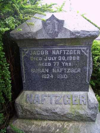 NAFTZGER, JACOB -- OVERALL VIEW 1 - Wayne County, Ohio | JACOB -- OVERALL VIEW 1 NAFTZGER - Ohio Gravestone Photos