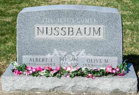 NUSSBAUM, ALBERT J - Wayne County, Ohio | ALBERT J NUSSBAUM - Ohio Gravestone Photos