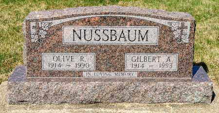 NUSSBAUM, GILBERT A - Wayne County, Ohio | GILBERT A NUSSBAUM - Ohio Gravestone Photos