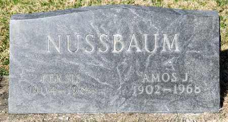 NUSSBAUM, AMOS J - Wayne County, Ohio | AMOS J NUSSBAUM - Ohio Gravestone Photos