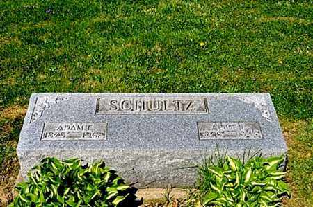 LLEWELLYN SCHULTZ, ALICE - Wayne County, Ohio | ALICE LLEWELLYN SCHULTZ - Ohio Gravestone Photos