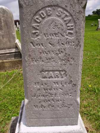 STAHL, MARY - CLOSEVIEW - Wayne County, Ohio | MARY - CLOSEVIEW STAHL - Ohio Gravestone Photos
