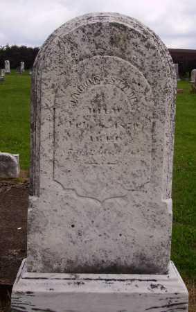 STAIR, JACOB - OVERALL VIEW - Wayne County, Ohio   JACOB - OVERALL VIEW STAIR - Ohio Gravestone Photos