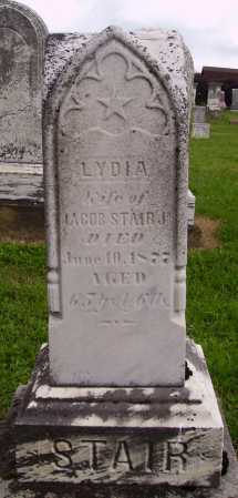STAIR, LYDIA - OVERALL VIEW - Wayne County, Ohio | LYDIA - OVERALL VIEW STAIR - Ohio Gravestone Photos