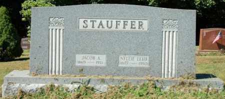 LEHR STAUFFER, NELLIE - Wayne County, Ohio | NELLIE LEHR STAUFFER - Ohio Gravestone Photos