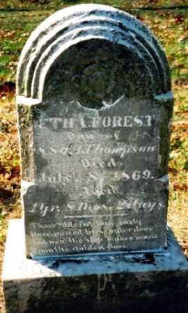 THOMPSON, ETHA FOREST - Wayne County, Ohio | ETHA FOREST THOMPSON - Ohio Gravestone Photos