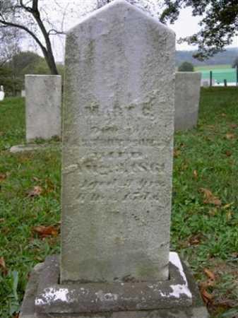 THOMPSON, MARY C. - Wayne County, Ohio   MARY C. THOMPSON - Ohio Gravestone Photos
