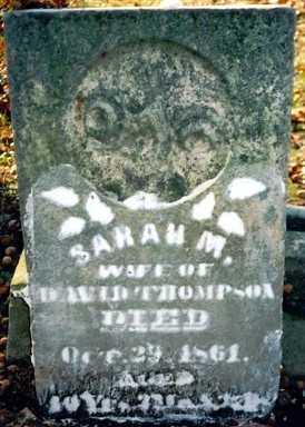 THOMPSON, SARAH M. - Wayne County, Ohio | SARAH M. THOMPSON - Ohio Gravestone Photos
