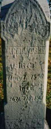 THOMPSON, W. R. - Wayne County, Ohio | W. R. THOMPSON - Ohio Gravestone Photos