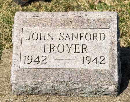TROYER, JOHN SANFORD - Wayne County, Ohio | JOHN SANFORD TROYER - Ohio Gravestone Photos