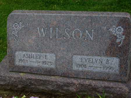 WILSON, ASHLEY E. - Wayne County, Ohio | ASHLEY E. WILSON - Ohio Gravestone Photos