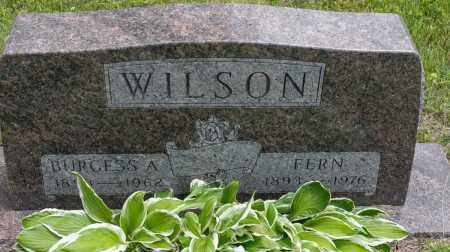 WILSON, FERN - Wayne County, Ohio | FERN WILSON - Ohio Gravestone Photos