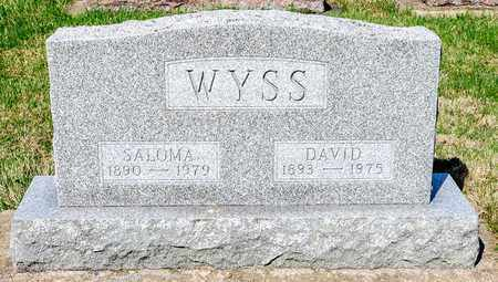 WYSS, DAVID - Wayne County, Ohio | DAVID WYSS - Ohio Gravestone Photos
