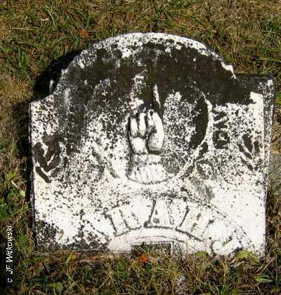 UNKNOWN, SARAH J. - Williams County, Ohio   SARAH J. UNKNOWN - Ohio Gravestone Photos